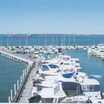 Docks A, C, & D View